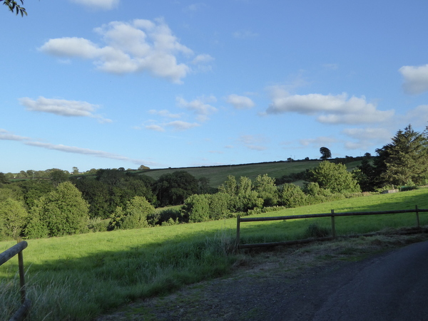 Acres of Dog Friendly Pasture and Woodland at Robin Hill Farm Cottages North Devon