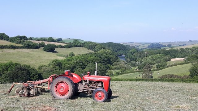 Haymaking at Robin Hill Farm